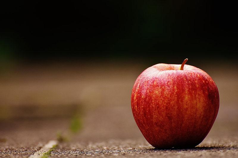 Organilicious-apple-cider-vinegar